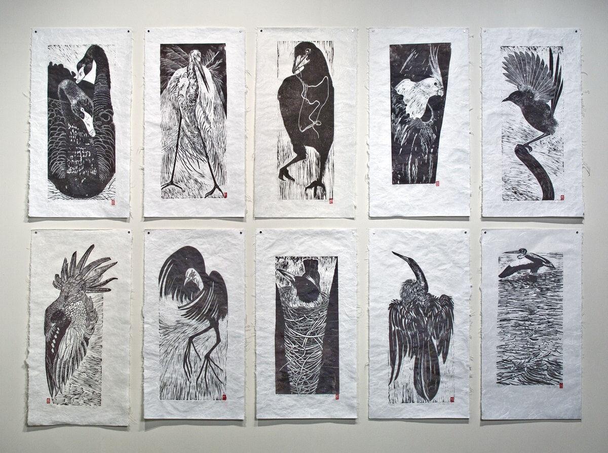 Australian Bird Series