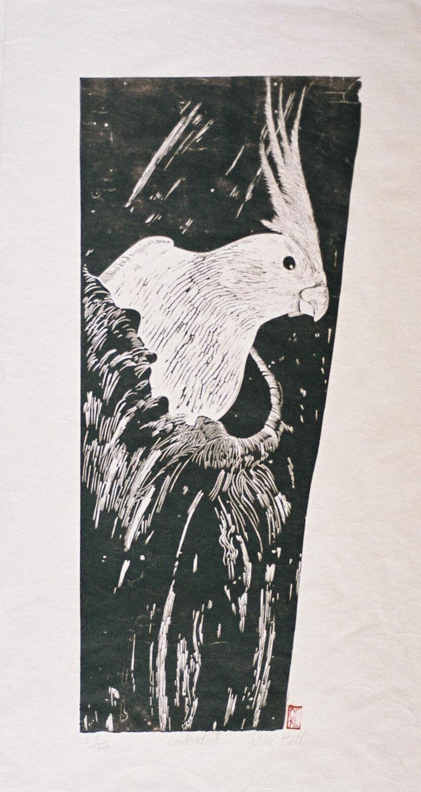 Cockatiel 1989 Lino Cut 100 x 50cm