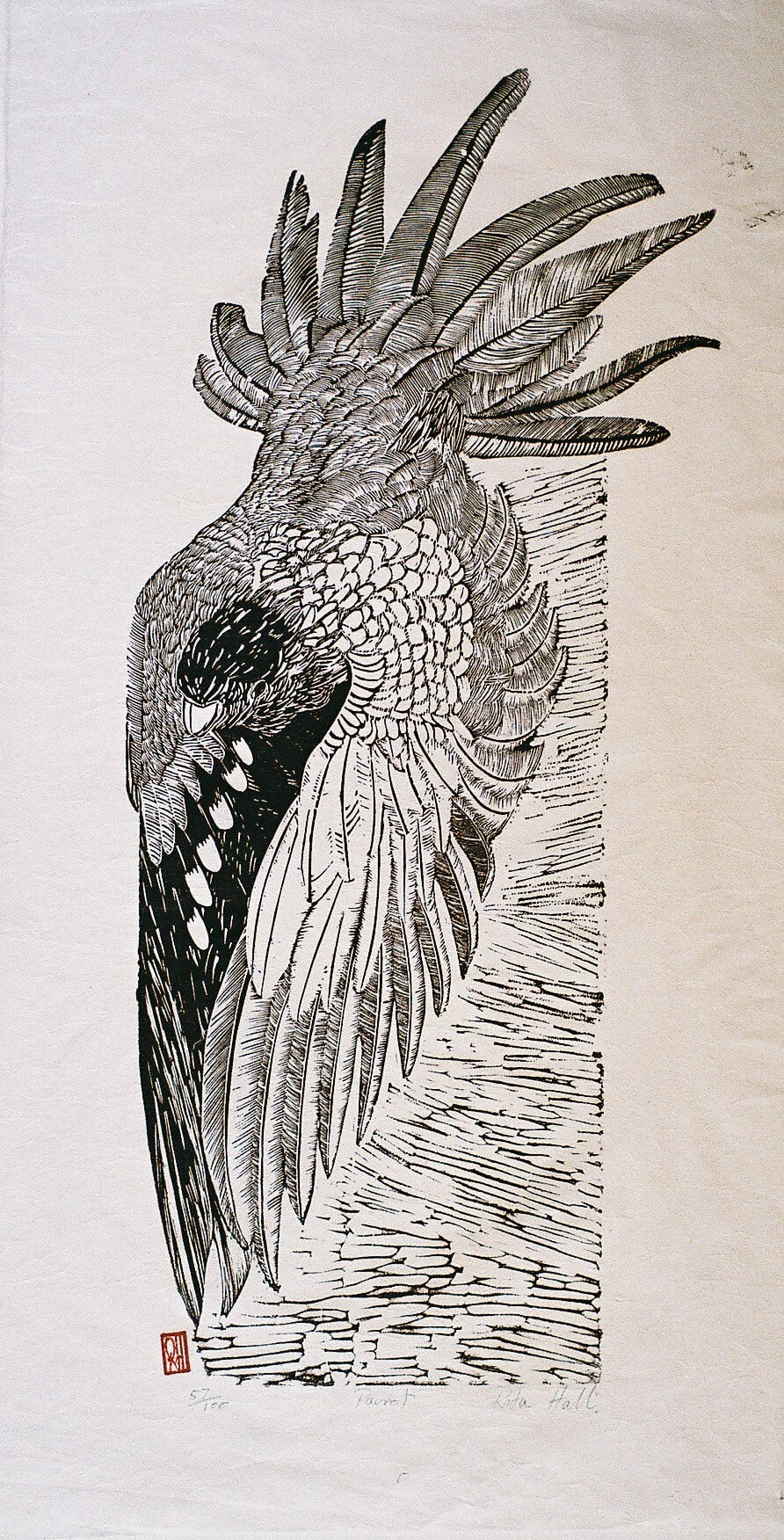 Parrot 1989 Lino Cut 100 x 50cm