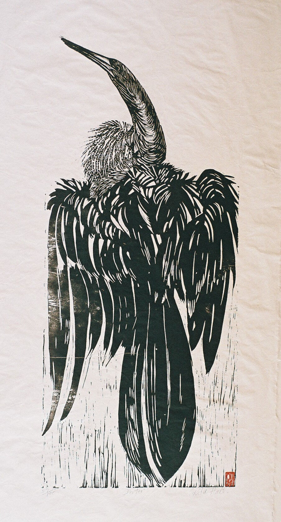 Darter 1989 Lino Cut 100 x 50cm