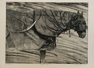 Hooded Horse 1st State 1995 Etching 56 x 76cm