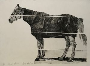 Sliced Horse 1994 Etching 56 x 76cm