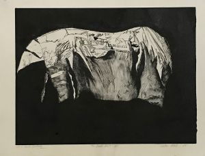 The Dark Horse US Hand Painted 1995 Etching 56 x 76cm