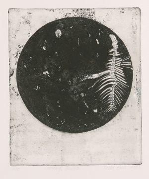 Coorong Bones 1977 Etching Image 30 x 25cm