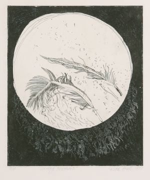 Coorong Feathers 1977 Etching Image 30 x 25cm