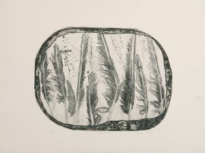 Feathers 1977 Etching Image 38x51cm