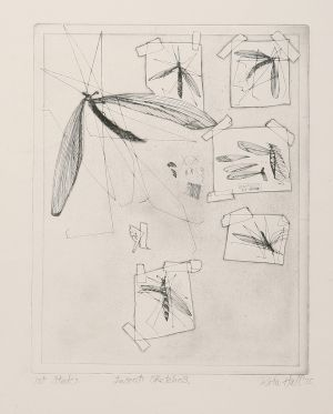 Insect Sketches 1975 Etching Image 41x33