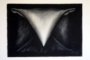 Dark Package 2002 63x91cm collograph charcoal