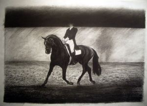 The dressage horse 1997 Charcoal 56 x 83cm