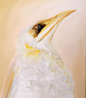17. Yellow Throated Miner - DESTROYED