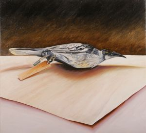 Friarbird 2008 Oil on Canvas 60 x 66cm