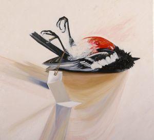 Scarlet Robin 2008 oil on canvas 60x66cm