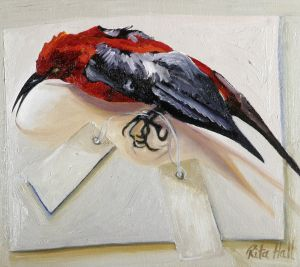 Red Breasted Bird 2007 Oil on canvas 36x40cm