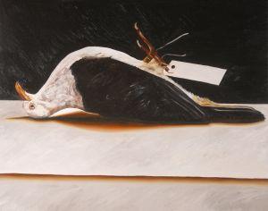 Pigeon 2008 oil on canvas 66x84cm